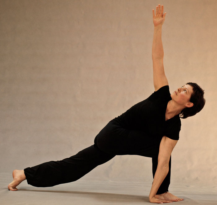 Classical hatha-yoga advanced training